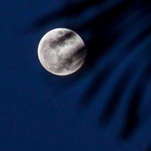 Moon2_500px